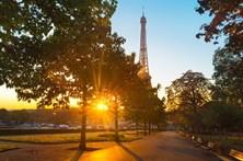 Paris fecha parques para combater ratos