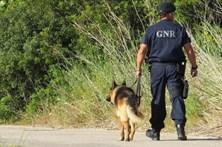 GNR detém em Évora três suspeitos de tráfico e apreende droga