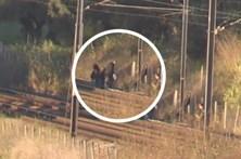 Investigações prosseguem junto à linha de comboio