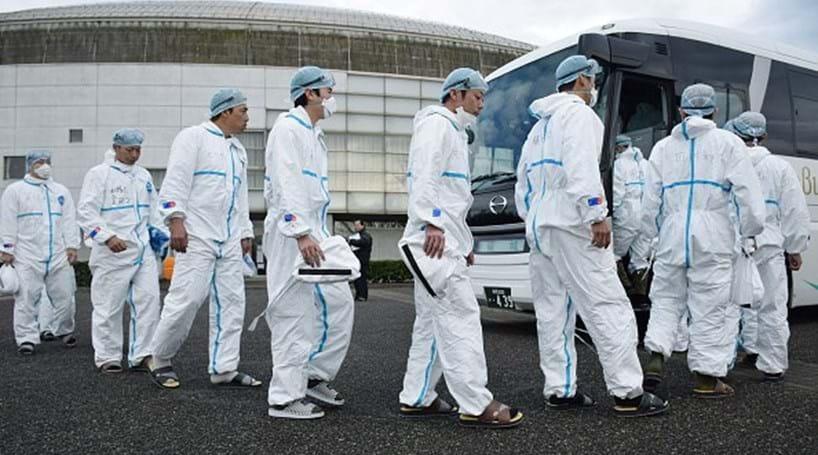 Japão abate mais 230 mil aves devido a gripe aviária