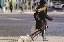 Autoridades em alerta para dias de frio polar