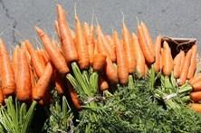 Homem morre a apanhar cenouras