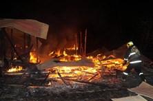 Chile decreta estado de catástrofe no centro país devido aos incêndios