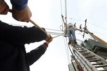 Nove concelhos vão estar horas sem eletricidade