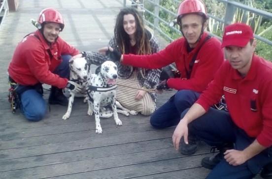 Dois cães salvos pelos bombeiros