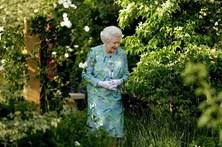 Quando a rainha Isabel II se escondeu atrás de um arbusto
