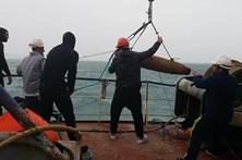 Bomba encontrada na Nazaré foi detonada no mar