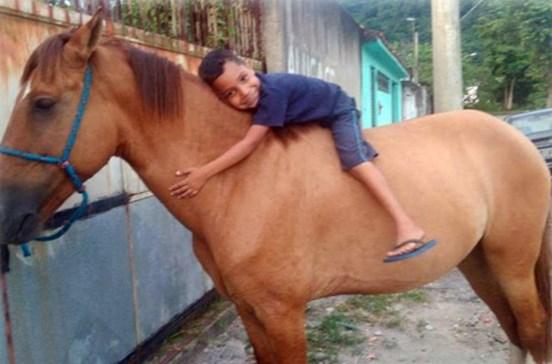Ladrão devolve cavalo ao saber que é de menino doente