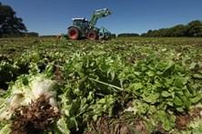 Agricultor de 82 anos morre num acidente de trator em Vimioso
