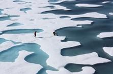 Gelo nos polos recua para minimos recordes e perde área maior do que o México