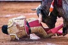Toureiro fica com corno de touro espetado no ânus