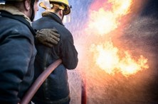 Quatro meios aéreos combatem chamas junto a Universidade da Covilhã