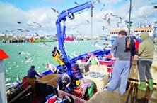 Cursos de pescadores parados no Barlavento algarvio