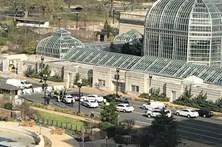 Mulher tenta atropelar polícias em Washington