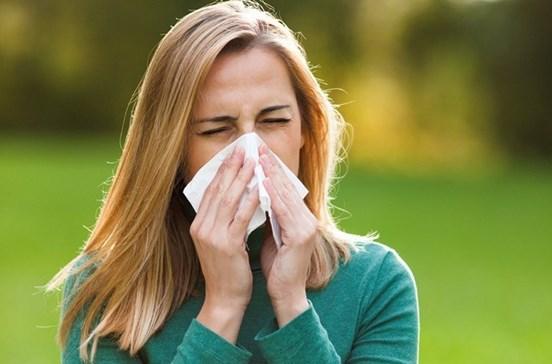 Alerta para níveis muito elevados de pólen