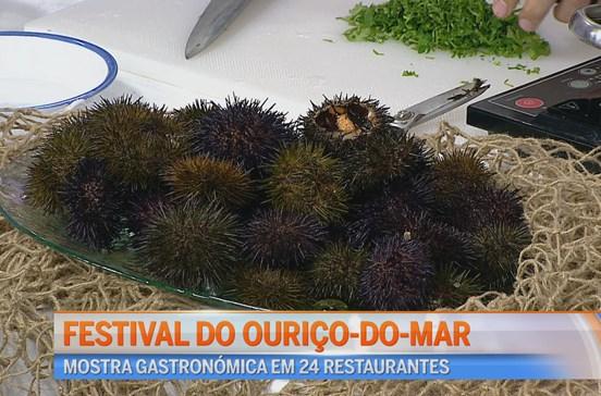 Festival do Ouriço do Mar