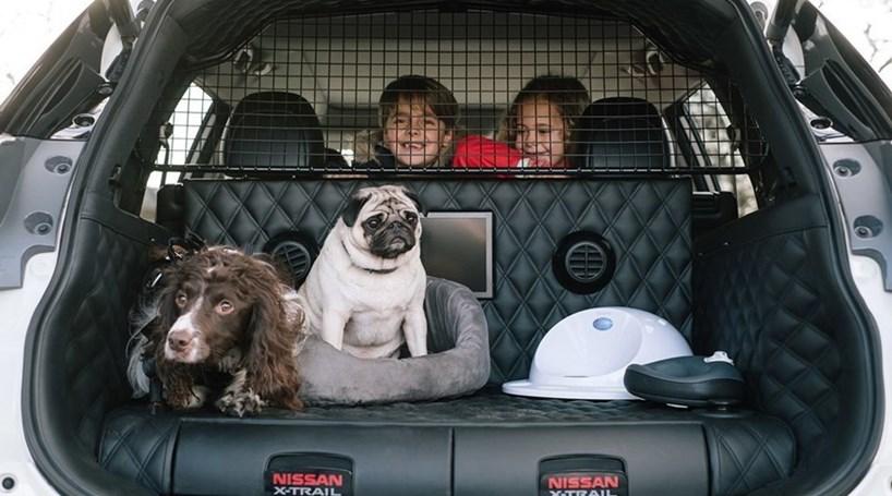 Nissan cria carro para cães