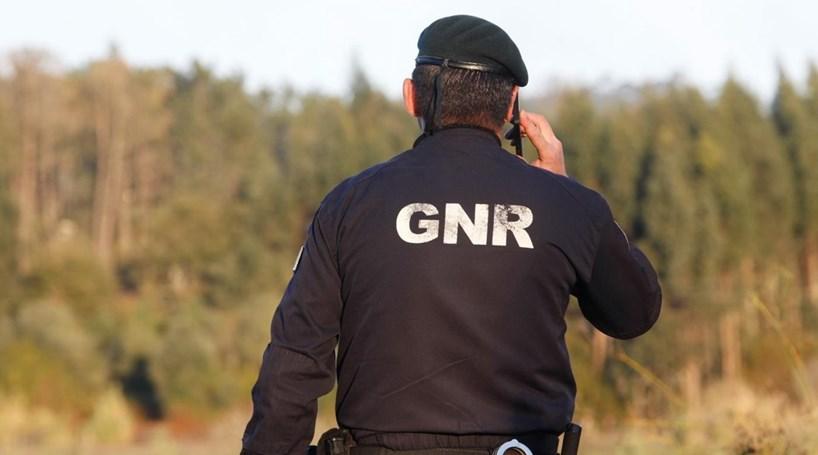 Resultado de imagem para GNR Aveiro   Arouca – Detido em flagrante por caça ilegal