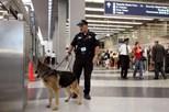Vídeo de passageiro desembarcado à força coloca em risco polícia nos aeroportos de Chicago