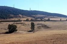 CAP preocupada com falta de água e pasto para os animais devido à seca