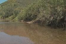 Mulher sofre ataque epilético e cai a ribeira em Tavira