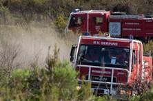 Concelhos afetados por incêndios vão ser alvo de projeto piloto
