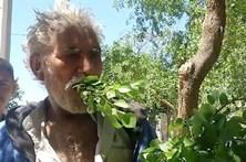 Paquistanês viciado em comer árvores