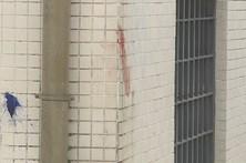 Dono de rotweiller que atacou criança foi detido