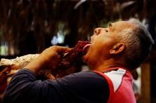 Luta de galos é tradição em Cuba