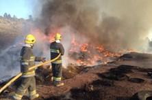 Incêndio destrói contentor em aterro de resíduos industriais em Felgueiras