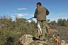 Médica não gosta de caça e nega atestado