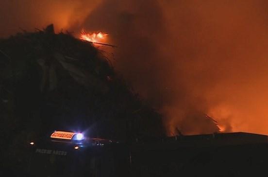 Incêndio atinge fábrica de resíduos em Cascais