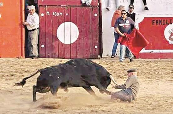 Idoso sobrevive a colhida de touro