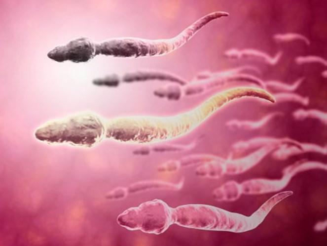 Esperma alterou-se em 38 anos