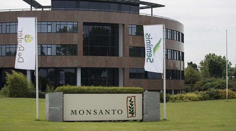 Tribunal informal acusa gigante Monsanto de violação dos direitos do homem e ecocídio