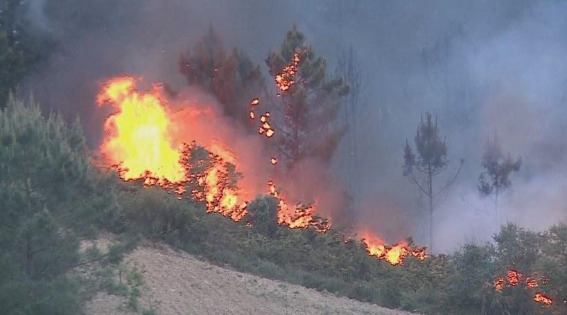 Chuva ajuda a combater o incêndio em Vila Real