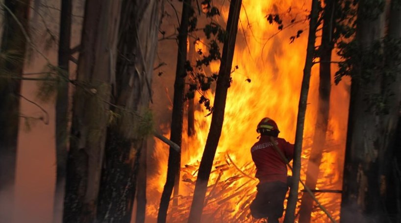 Mais de 100 bombeiros combatem fogo florestal em Oliveira de Frades