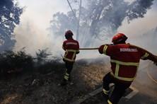 PJ detém mulher suspeita de atear fogo florestal em Arcos de Valdevez