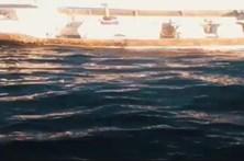 Tripulantes da Estação Salva-Vidas da Ericeira resgataram oito náufragos