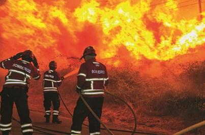 Detido suspeito de atear incêndio florestal em Castelo de Paiva