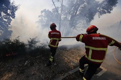 Quatro concelhos do continente em risco 'máximo' de incêndio