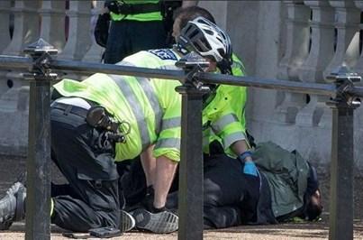 Homem detido com faca junto ao Palácio de Buckingham
