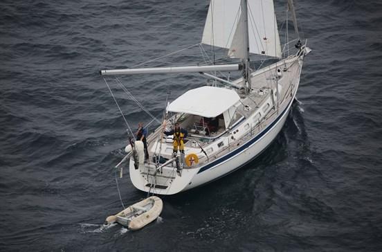 Tripulantes de veleiro resgatados após chocar com baleia