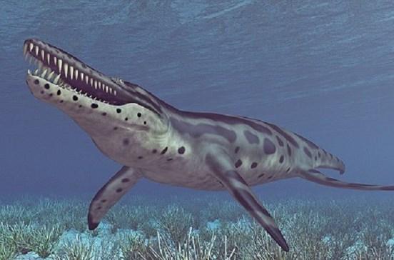 Identificada nova espécie de grande réptil aquático do tempo dos dinossauros