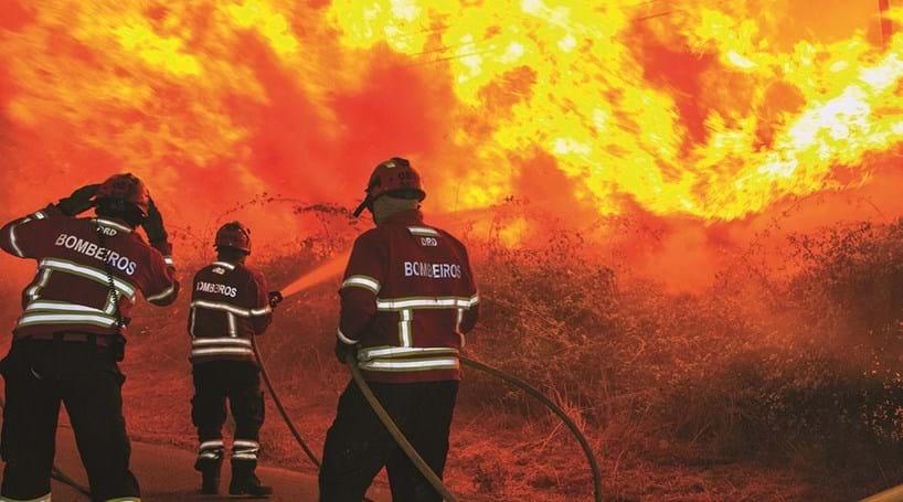 Polícia Judiciária deteve pastor suspeito de atear incêndio na serra do Alvão