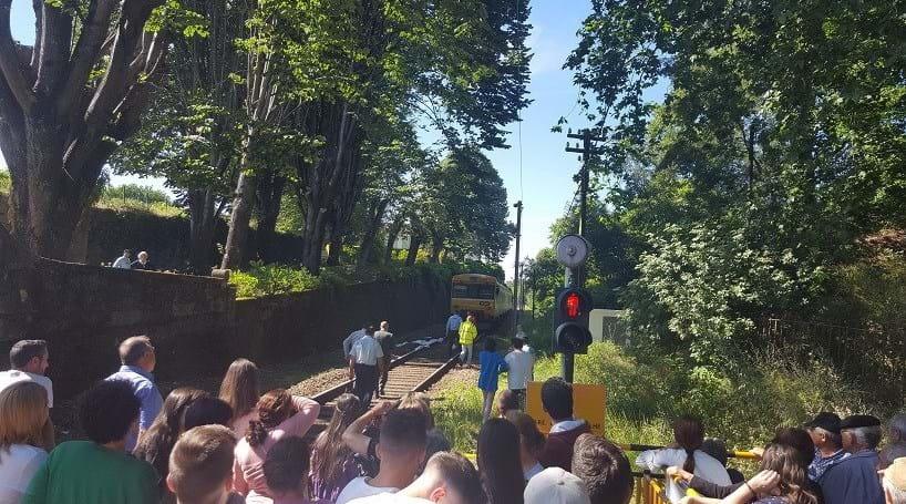 Mulher morreu colhida por comboio na Linha do Douro
