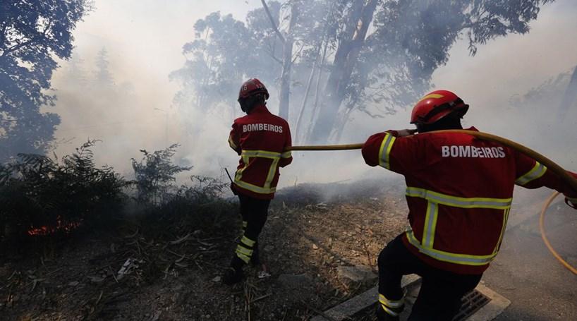 Fogo no concelho da Sertã mobiliza 120 homens e dois meios aéreos
