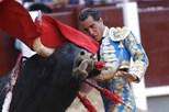 Ivan Fandiño morre colhido por touro em praça francesa