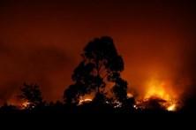 Trezentos escuteiros envolvidos no apoio às populações vítimas dos incêndios