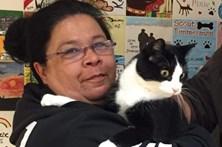 Gato reencontra dona 12 anos após fugir de casa